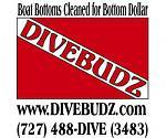 Click image for larger version  Name:Divebudz_October_09.jpg Views:126 Size:15.5 KB ID:170618