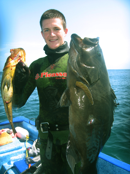 Calico Bass and Broomtail Grouper - My Photo Gallery