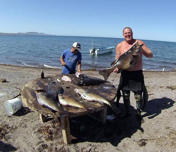 Spearfishing Mulege, Mexico