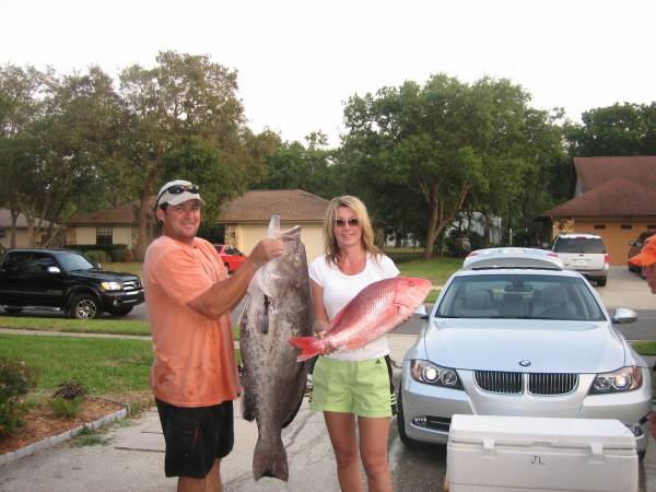 Big grouper and snapper